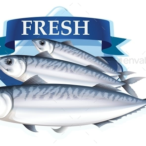 Fresh Sardines with Text