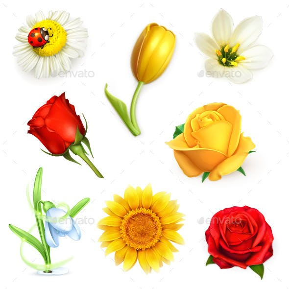 Summer Flowers Icons