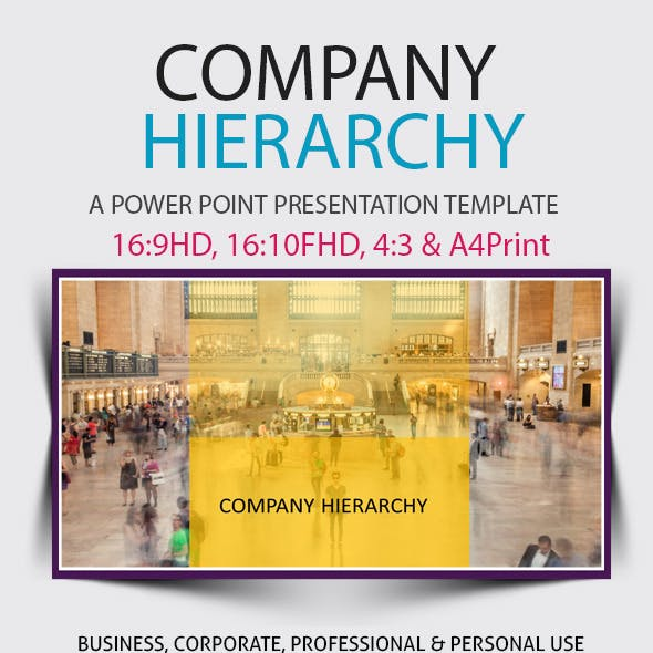 Company Hierarchy Power Point Presentation