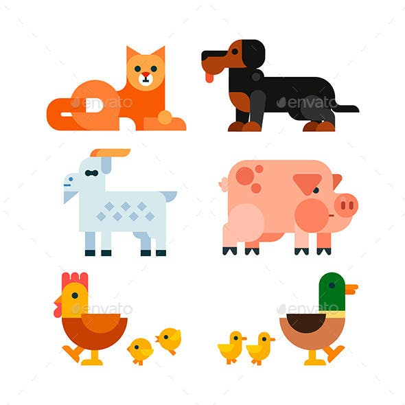 Domestic Animals Set of Flat Illustrations