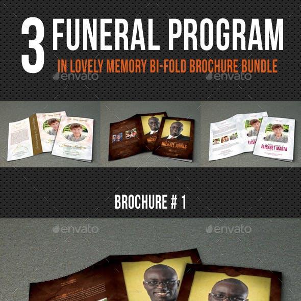 3 in 1 Funeral Program Brochure Bundle