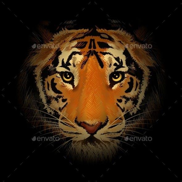 The Tiger Head