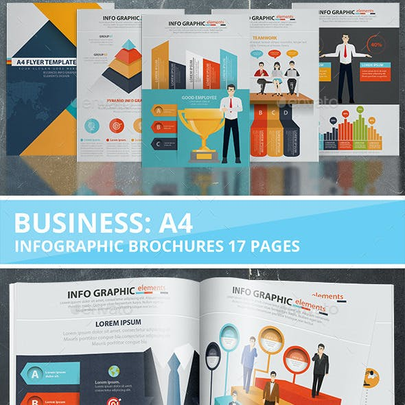 Business Infographic Design 17 Pages