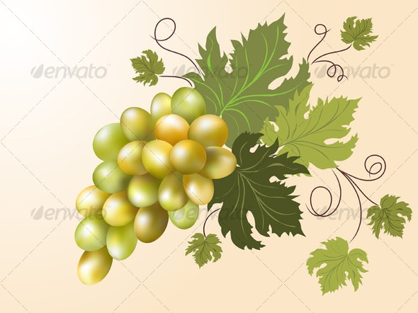 White grapes   - Food Objects