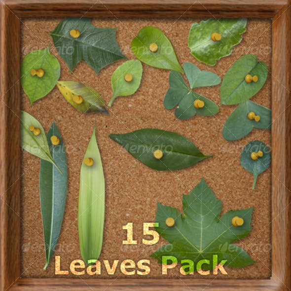 Leaves Pack - Includes 15 HD Elements