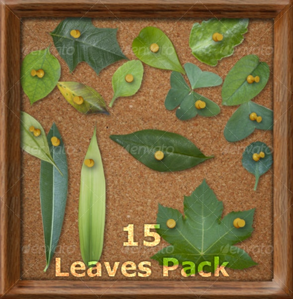 Leaves Pack - Includes 15 HD Elements - Nature & Animals Isolated Objects