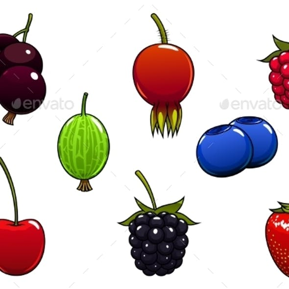 Sweet Ripe Juicy Isolated Berries