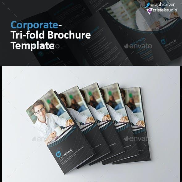 Elegant Tri-fold Brochure