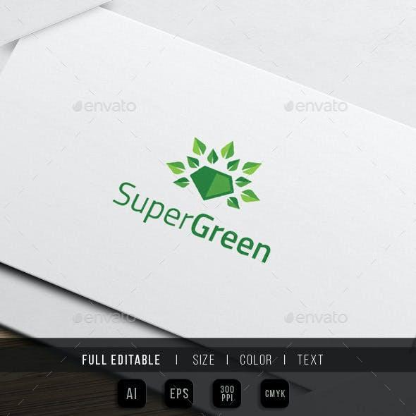 Super Go Green - Eco Hero Logo