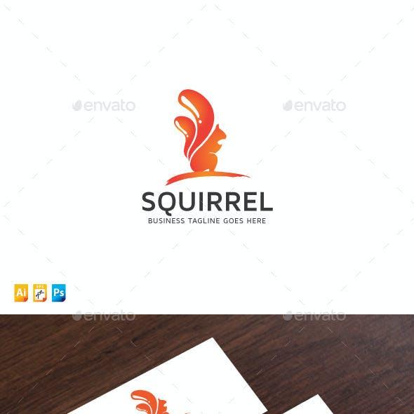 Squirrel Paint Media