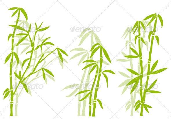 Bamboo Tree - Flowers & Plants Nature