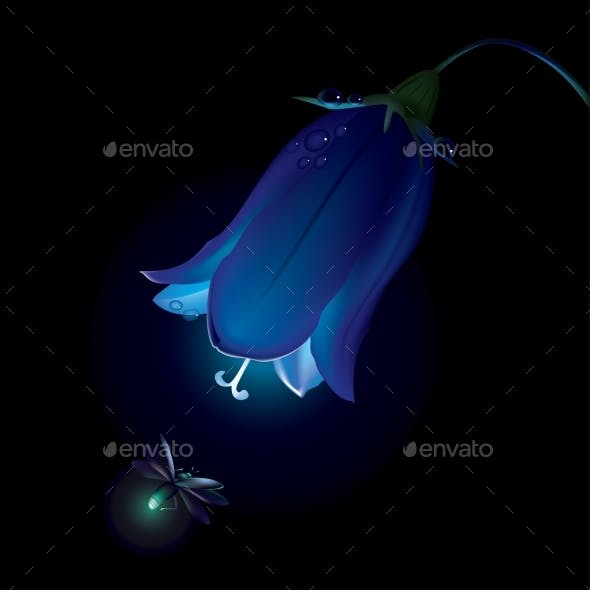 Campanula And Firefly