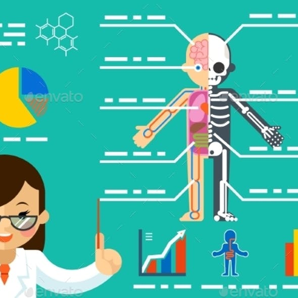 Medical Concept. Doctor Woman Showing Anatomy