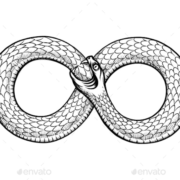 Snake Curled In Infinity Ring. Ouroboros Devouring