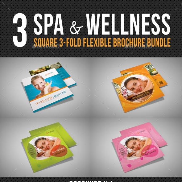3 Spa Wellness Square 3-Fold Brochure Bundle
