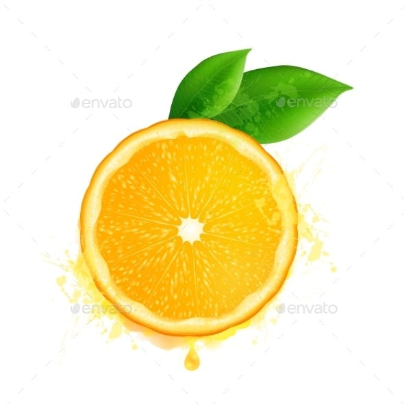 Vector Orange Slice With Leaves And Watercolor
