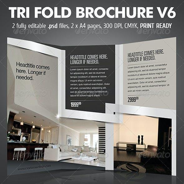 TriFold Brochure V6
