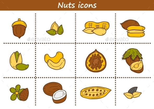 Set Of Cartoon Hand Drawn Objects On Nuts Theme - Food Objects