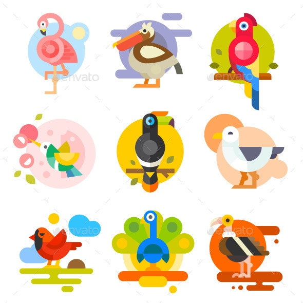 Different Birds - Animals Characters