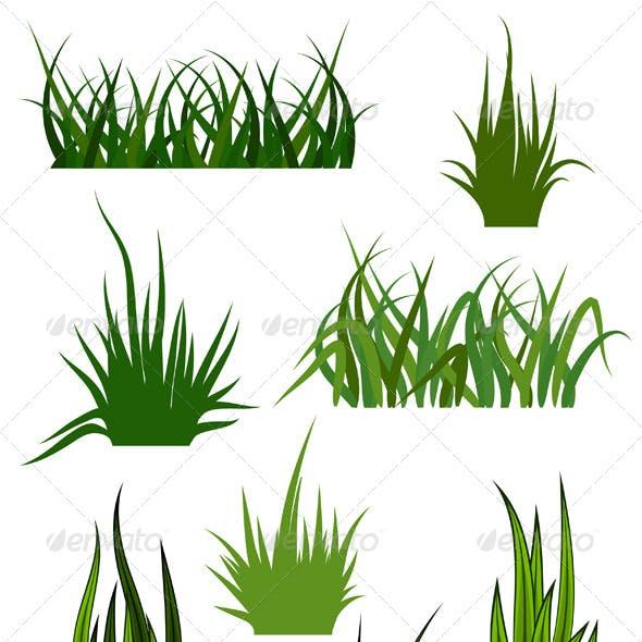 Green Grass Elements for Design