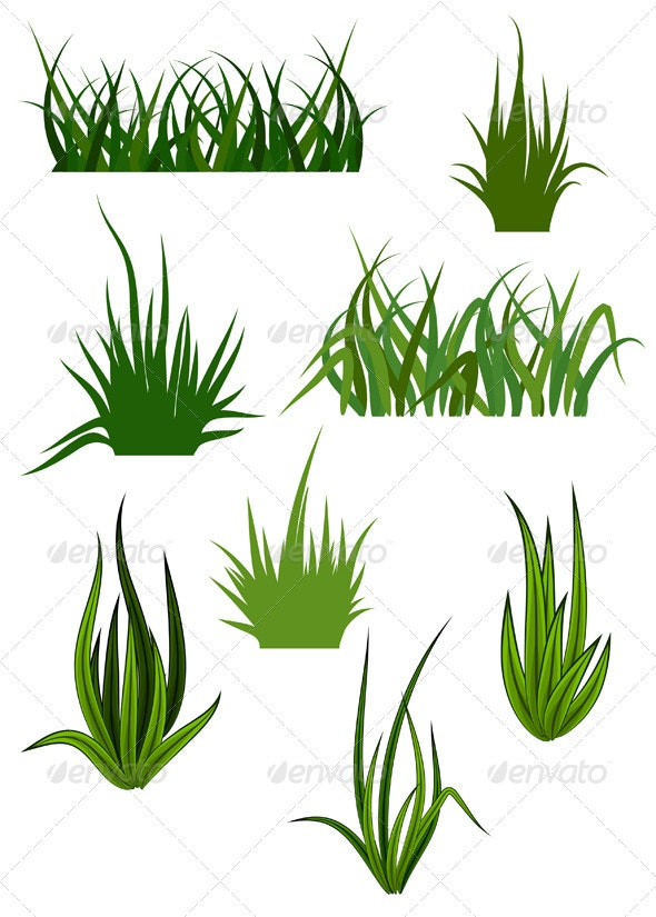 Green Grass Elements for Design - Flowers & Plants Nature