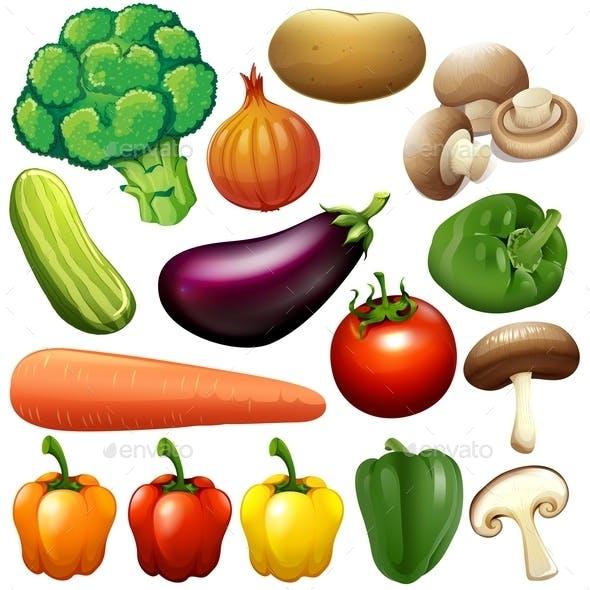 Different Kind of Fresh Vegetables