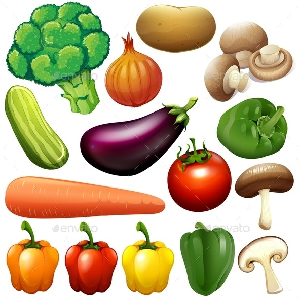 Different Kind of Fresh Vegetables - Organic Objects Objects