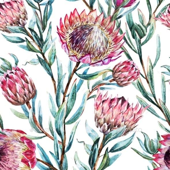 Watercolor Tropical Protea Pattern