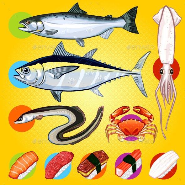 Japanese Sushi Fishes Sashimi