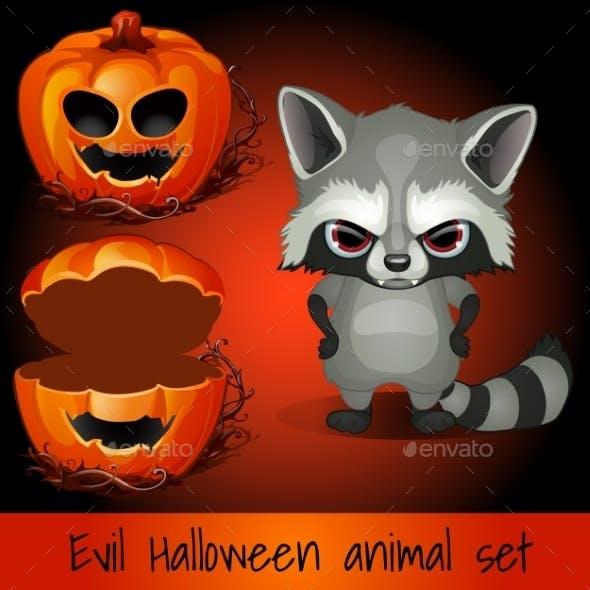 Open Pumpkin and an Evil Raccoon