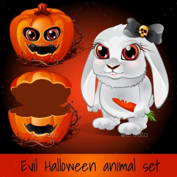 Pumpkin and Rabbit on a Dark Red Background