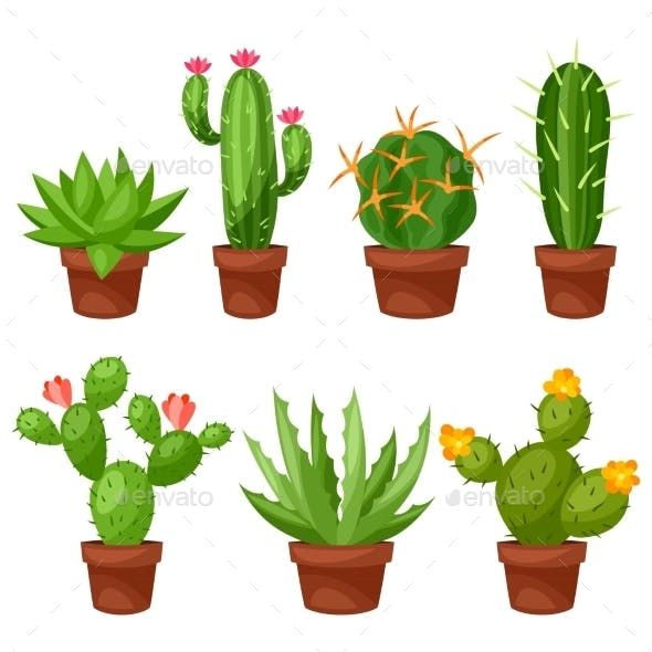 Collection of Abstract Cactuses in Flower Pot