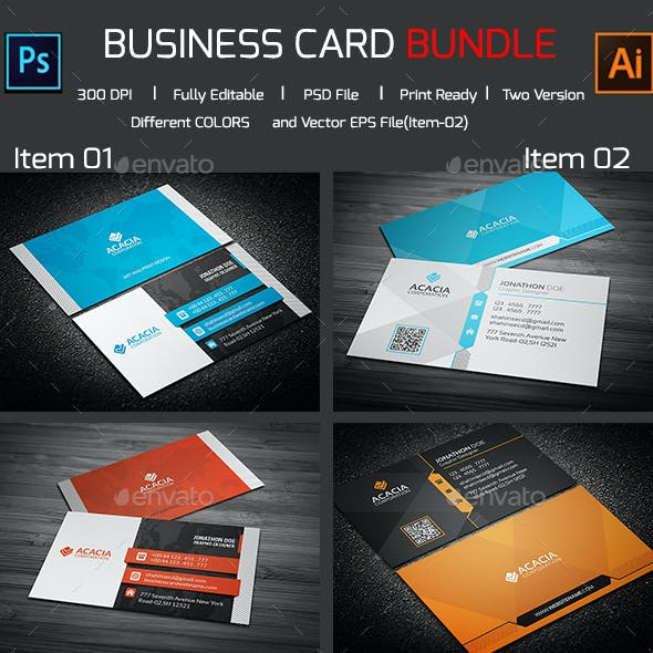 Bundle- 2 in 1 Business Card