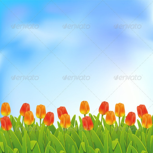 Spring background  - Flowers & Plants Nature
