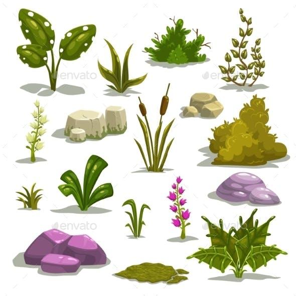 Cartoon Nature Elements
