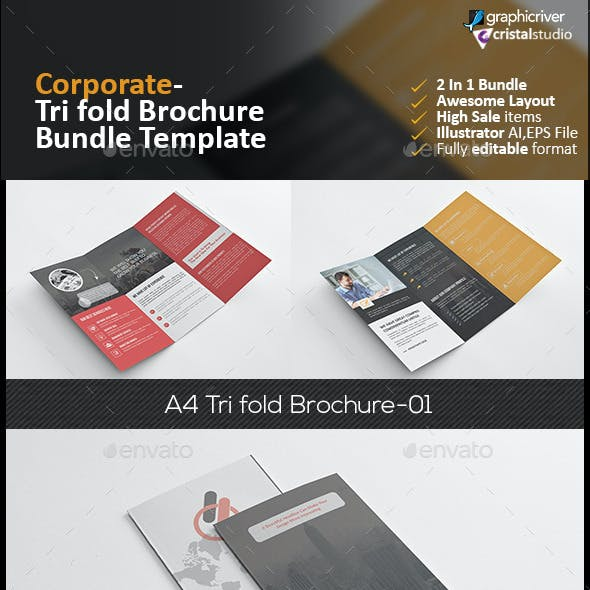 Tri Fold Brochure Bundle 2 in 1