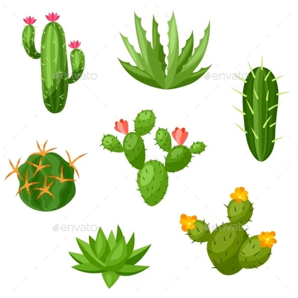 Collection Of Abstract Cactuses And Plants