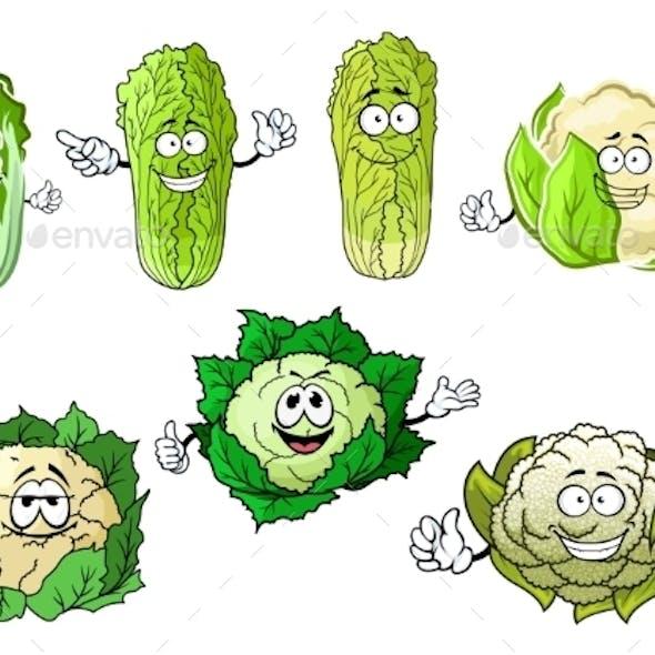 Cartoon Cauliflowers And Chinese Cabbage