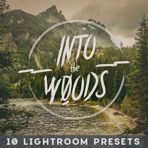 Into the Woods - 10 Lightroom Presets