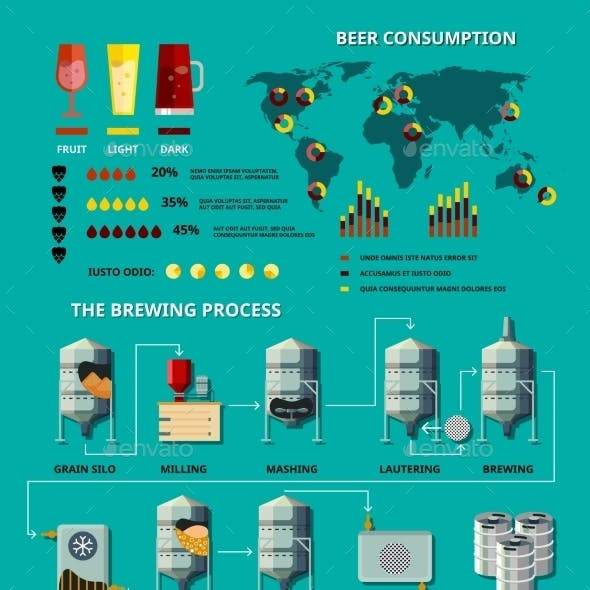 Vector Beer Infographic