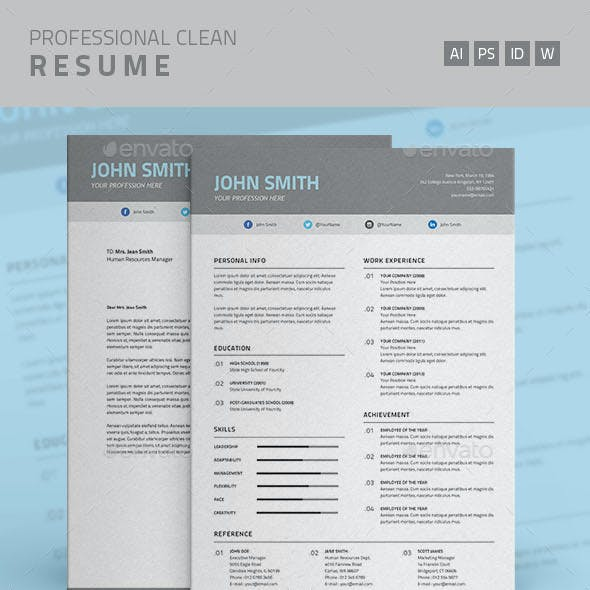 Professional Clean Resume