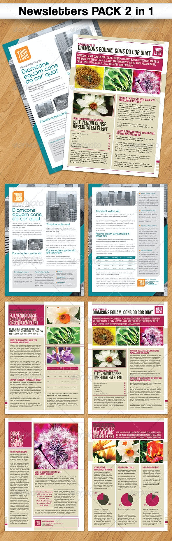 Newsletters PACK 2 in 1 - Newsletters Print Templates