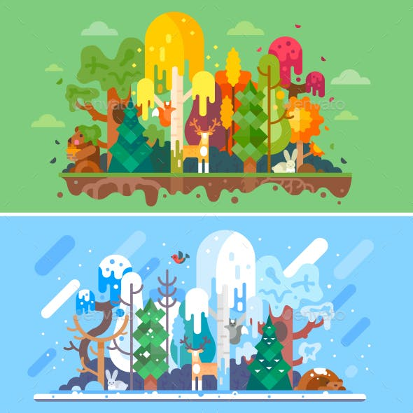 Autumn and Winter Forest Landscapes