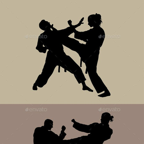 Taekwondo Graphics Designs Templates From Graphicriver