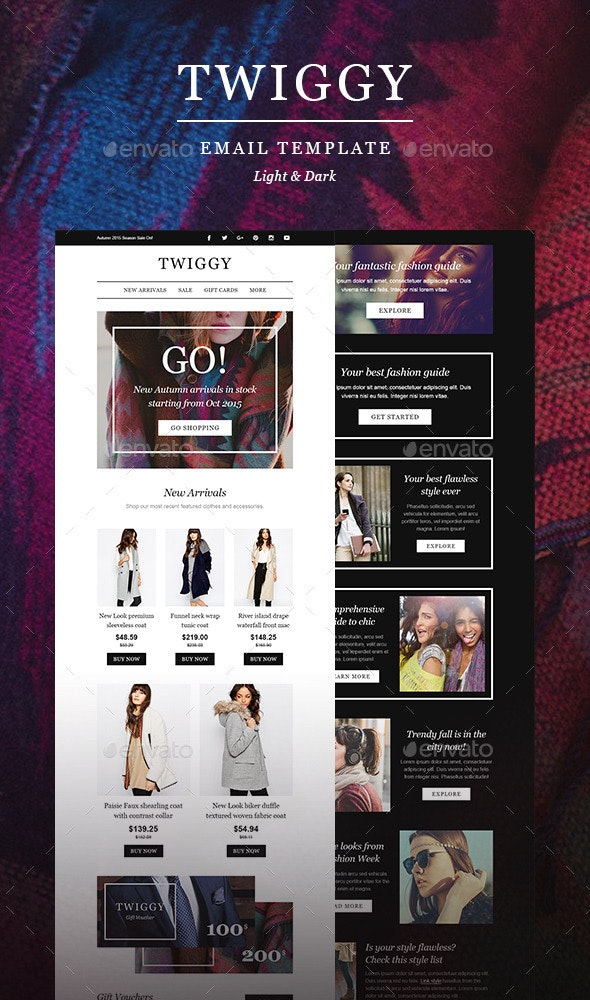 Twiggy - Fashion E-Newsletter Template - E-newsletters Web Elements