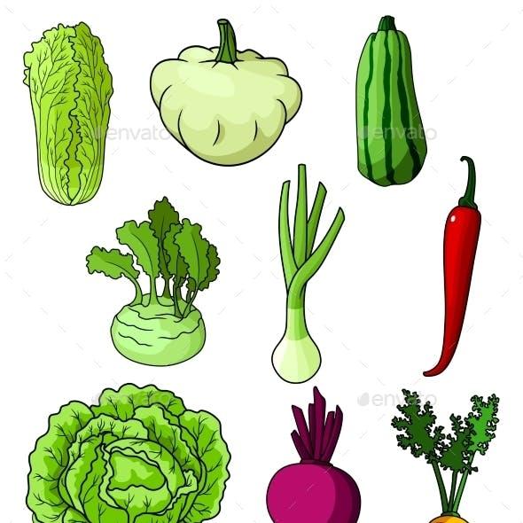 Fresh Isolated Organic Farm Vegetables