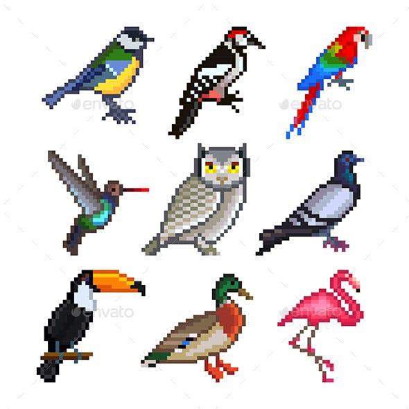 Pixel Birds for Games Icons Vector Set