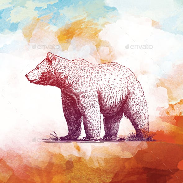 Engraving Bear on watercolor background