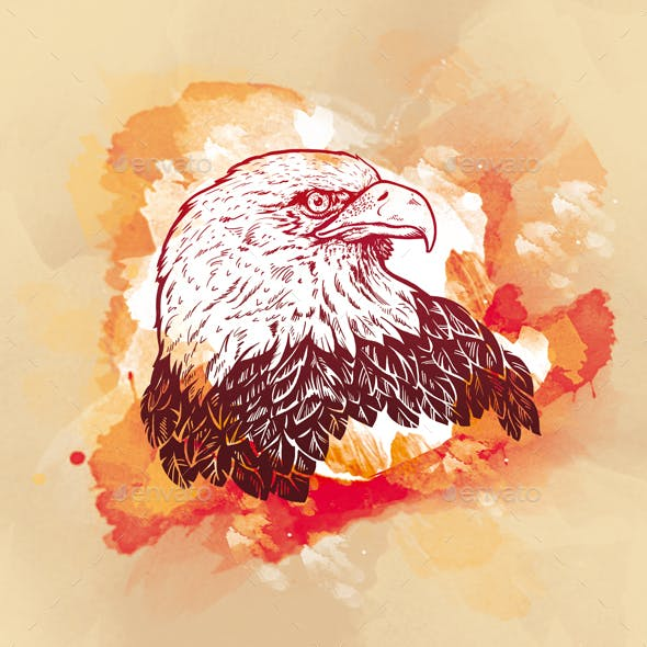 Engraving Eagle on watercolor background