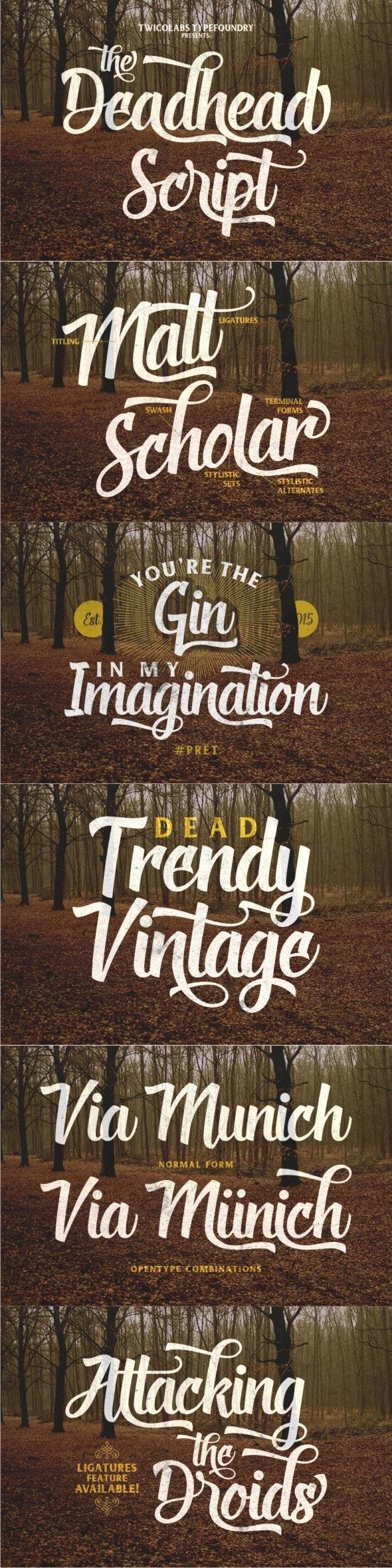 Deadhead Script - Handwriting Fonts